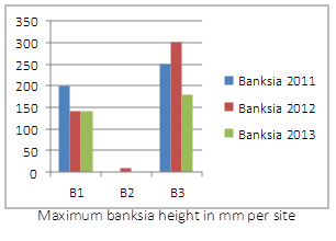 banksia_heights