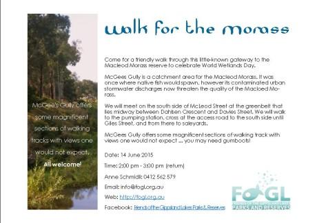 Gully Walk flyer