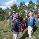 Looking at revegetation on the banks of Salt Creek from Leo's Track